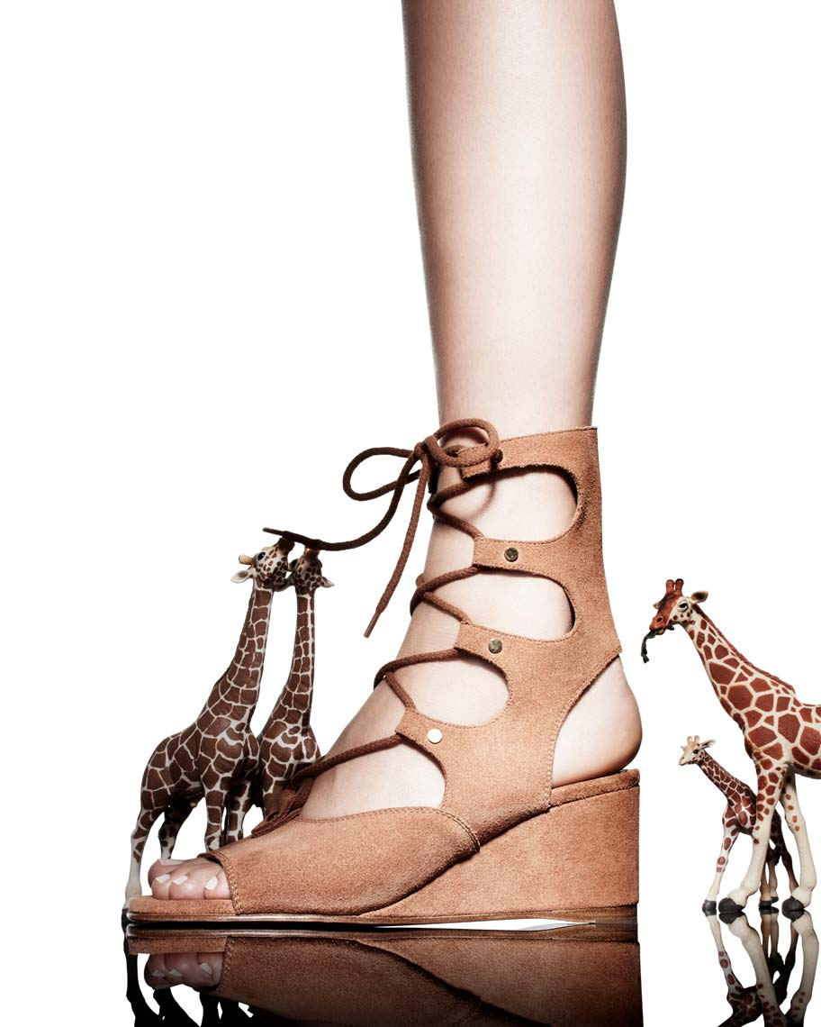 Jeff Stephens | Shoe and Handbags Toy Animals
